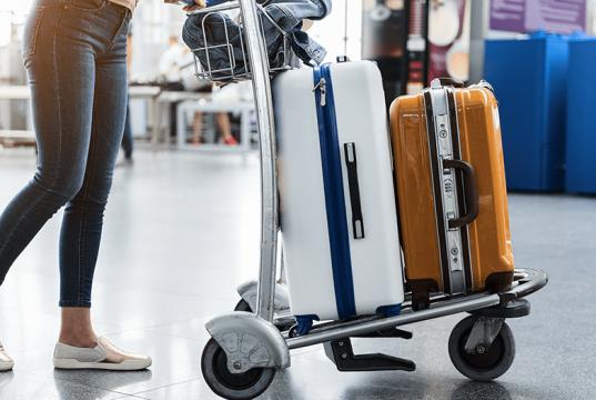 провоз ручной клади и багажа